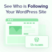 How to See Who Is Following My WordPress Site (4 Quick & Easy Ways)