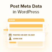 How to Display Blog Post Meta Data in Your WordPress Themes