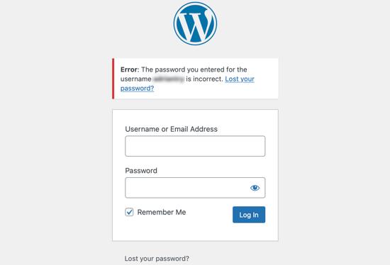 Incorrect Password Issue
