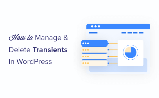 How to manage and delete transients in WordPress (the easy way)