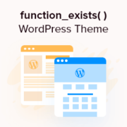 Best Practice: Check if Function Exists When Adding in WordPress Theme