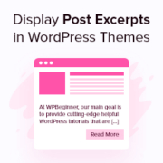 How to Display Post Excerpts in WordPress Themes