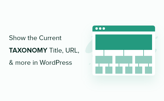 Display current taxonomy title, URL, and more in WordPress theme