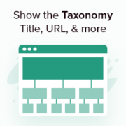 How to Show the Current Taxonomy Title, URL, & More in WordPress